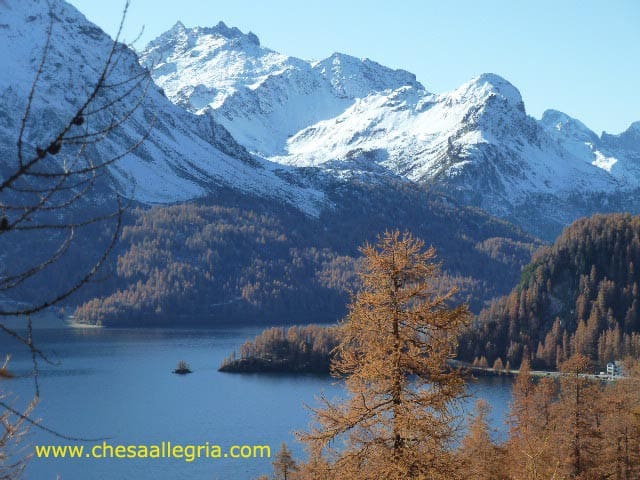 Sils Maria/ Engadin, fantastic mountain view appt - Sils im Engadin/Segl - Apartment