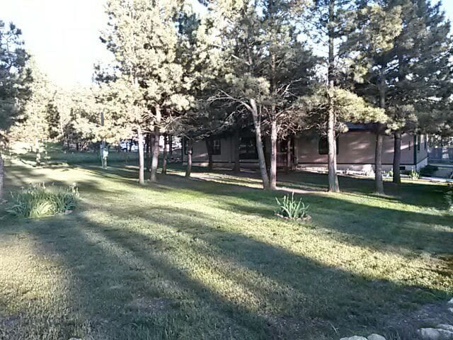 Quiet and secluded with pine trees - Rapid City - Dom