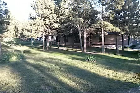 Quiet and secluded with pine trees - Rapid City - Haus