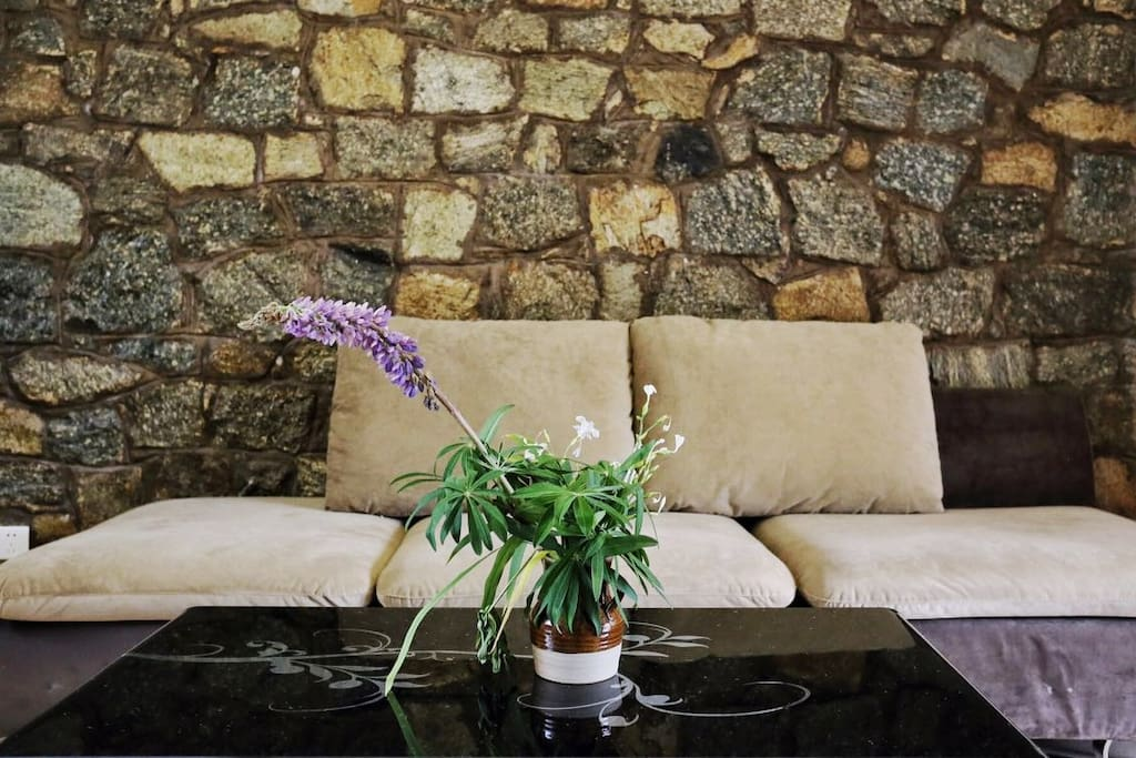 沙发及背景墙 sofa and backdrop