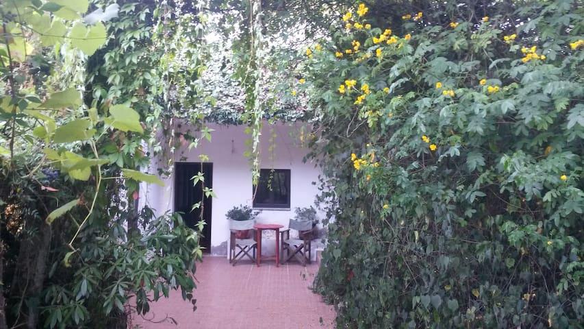 T1 na Quinta da Avo Miquinhas - soengas/Geres - Soengas - House
