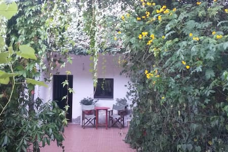 T1 na Quinta da Avo Miquinhas - soengas/Geres - Soengas