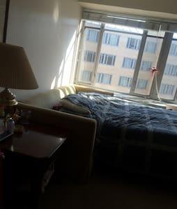 Comfortable SofaBed Dupont Circle - Washington - Apartment