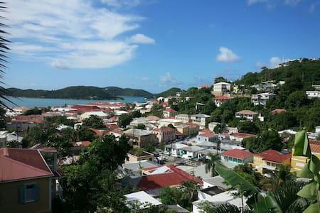 Historic Hideaway - Charlotte Amalie - Apartment