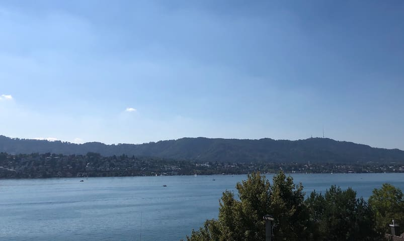 Penthouse in Zollikon with unique views