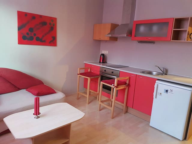 Cozy studio apartement near center - Tallinn - Wohnung