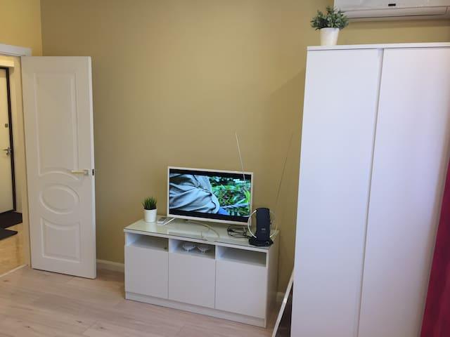 1 комнатная квартира с евроремонтом в г.Пушкино