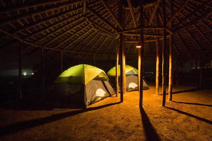 Campper Camp Woody