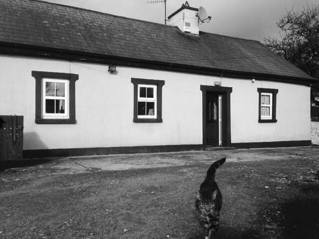 A cosy cottage near the Galtee Mountains - Mitchelstown