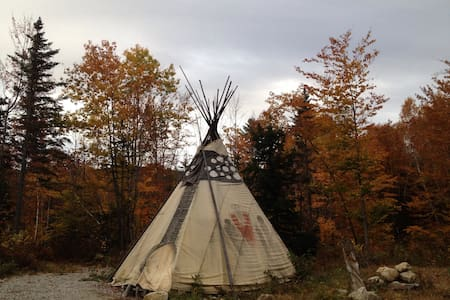 Surround yourself with nature Tipi