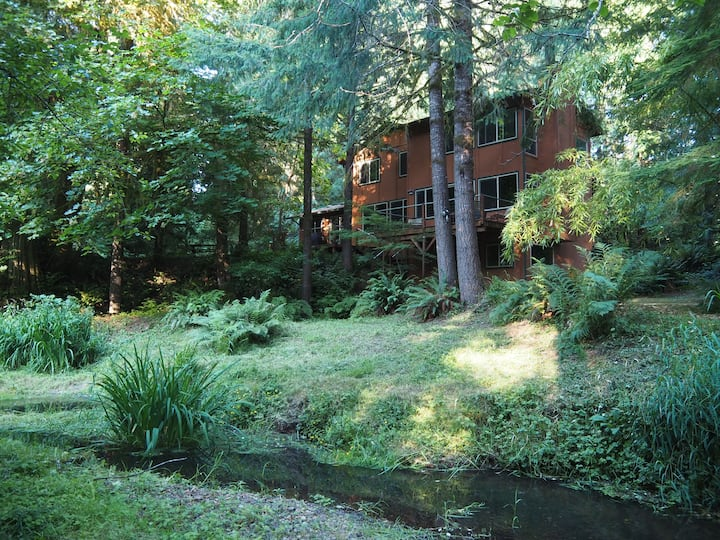 Secluded home with stream, pond and acreage