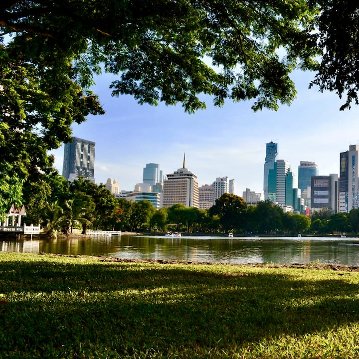 Enjoy the tranquillity  of the park