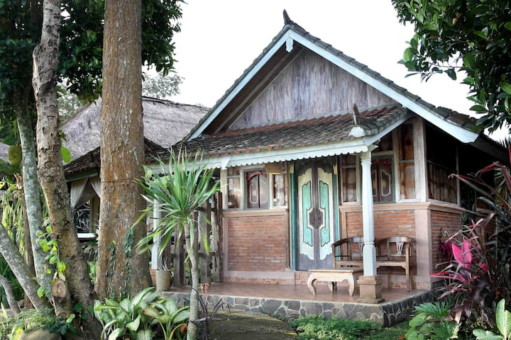 Rice Terrace Suite Puri Taman Sari - Marga - Bungalow