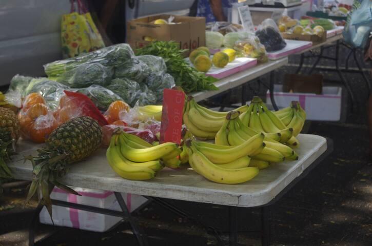 KCC. Farmer Market. 10 minutes walk