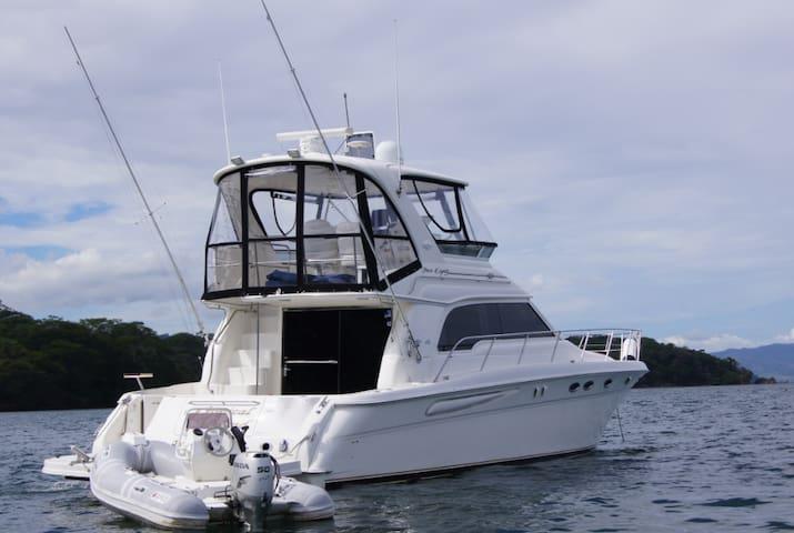 Modern Yatch Marina Club Nautico Puerto Azul - El Coyol - Boat