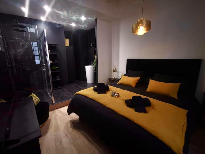Romantic and glamorous apartment... heart of Nîmes