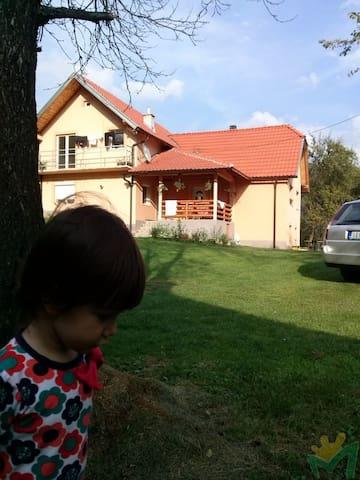 Cvijovic - Mokra Gora - บ้าน