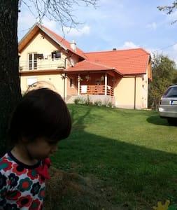 Cvijovic - Mokra Gora - Haus