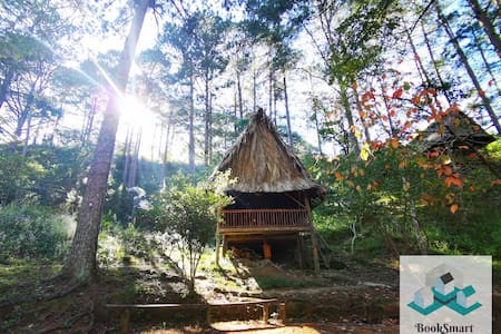 ♡ Family Bungalow in Forest ♡Homemade Organic Food