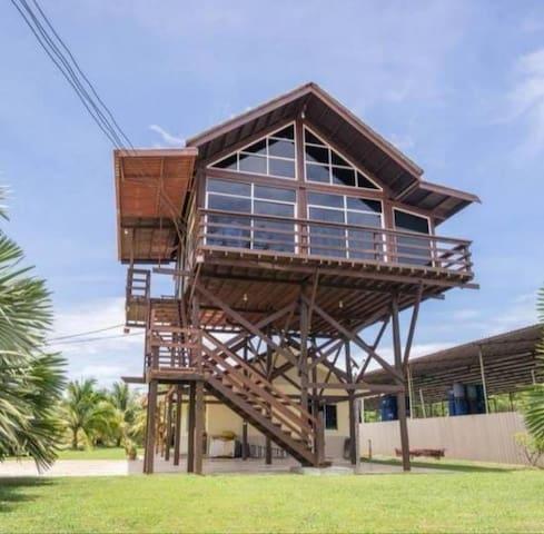 Star Ocean Beachfront Private Wooden Tree House