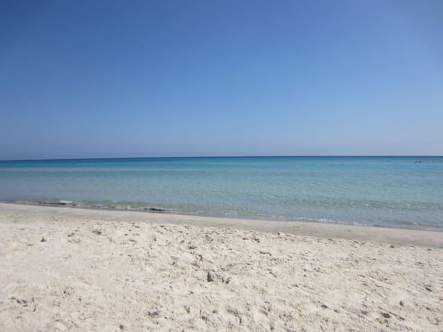 Appartement - 2 chambres - RDC - 5min de la plage - Hammam Al Agzaz - Daire