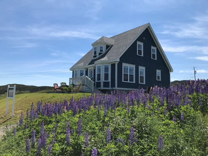 Blueberry Cottage Trinity,NL -Stunning Ocean Views
