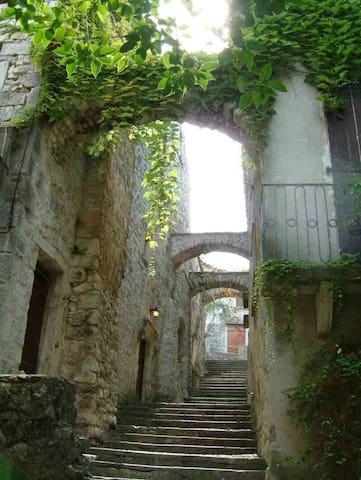 Maison des Comtes,l'escale des Arts - Sauve - Dom