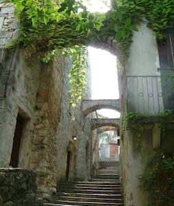 Maison des Comtes,l'escale des Arts - Sauve