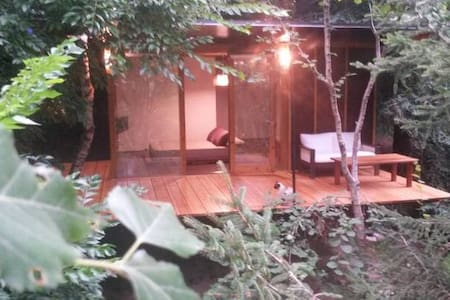 Habitación en el bosque 3.