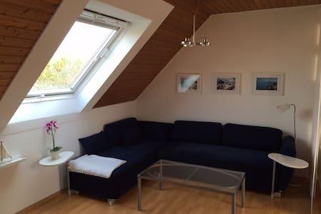 Helles 35m² Appartement im Zentrum Osnabrücks - Osnabrück - Huoneisto