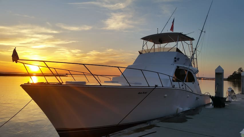 Spring aboard,  Escape to our Yacht.
