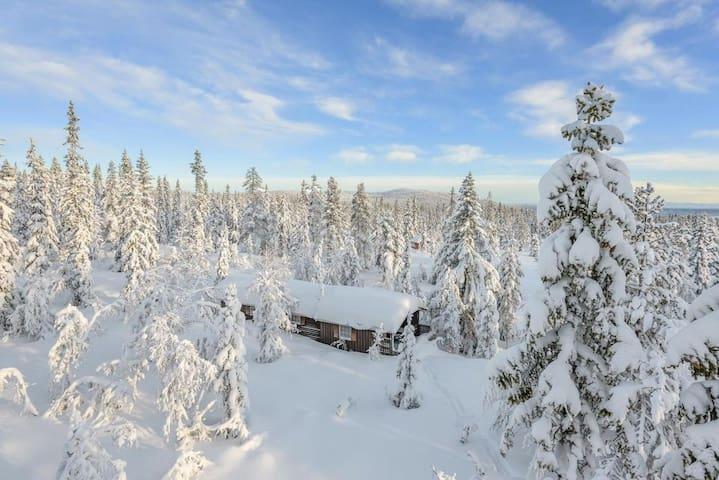 Cabin next to  ski trails, close to Oslo.