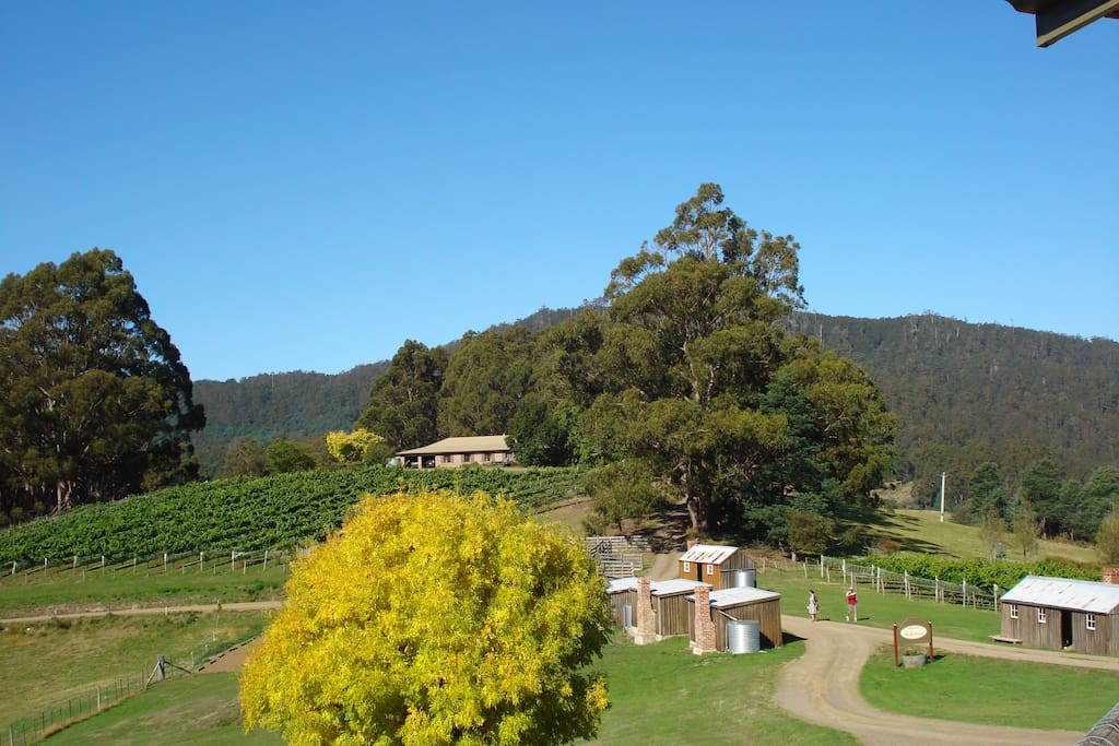 Magnificent views of vineyard and Heritage Listed Pickers Hut Village