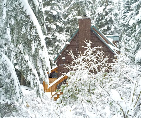 Wonderful Cabin with Hot Tub & Fireplace in Govi
