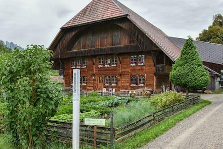 wielandleben BnB Bauernhaus - Eggiwil - Oda + Kahvaltı