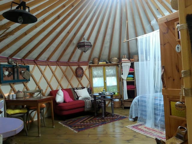 Cozy and unique Yurt in Abirim.