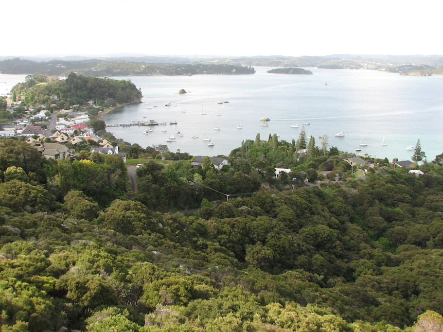 Russell from Flagstaff Hill. Russell Tree House on extreme right.