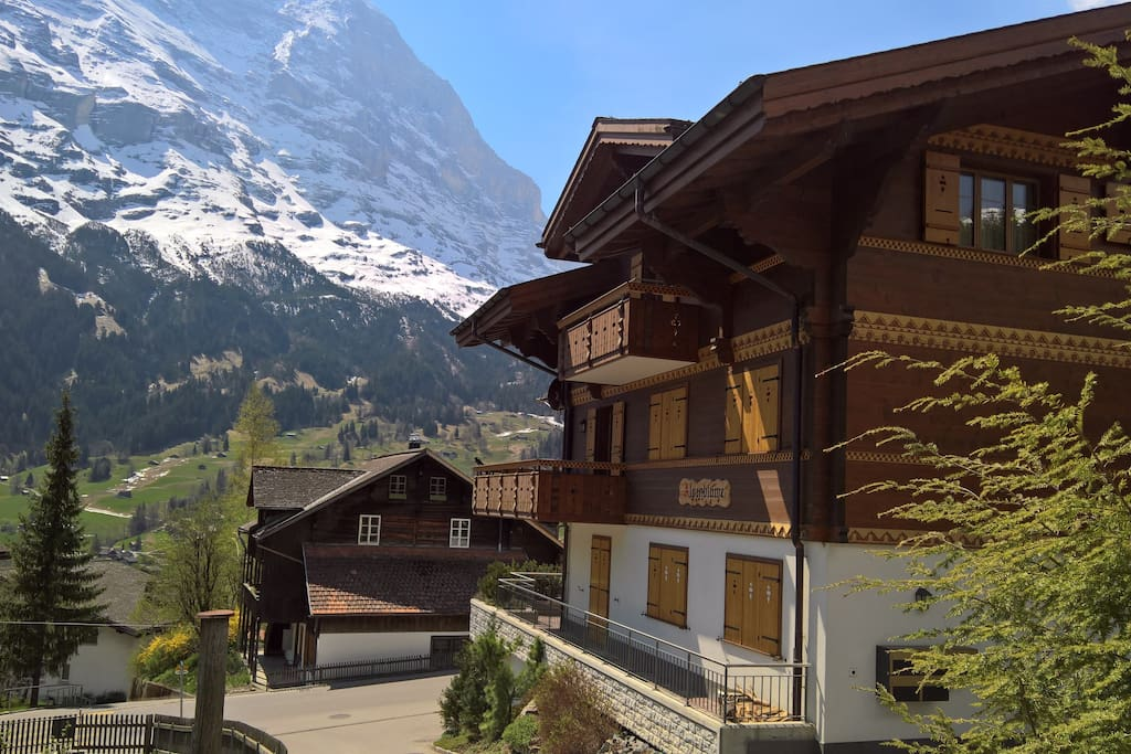 Chalet Alpenblume mit Bergsicht