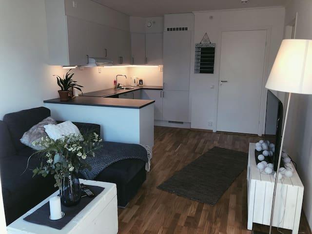 Sentral leilighet i Tønsberg sentrum