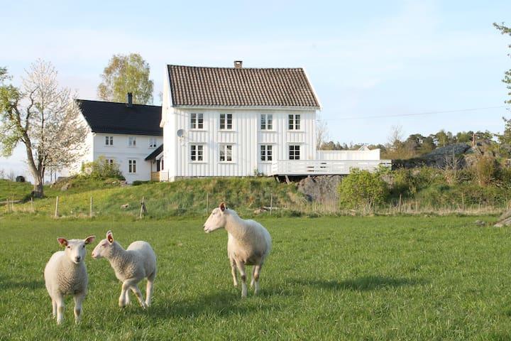 Koselig gårdshus med sjel nær Nidelva