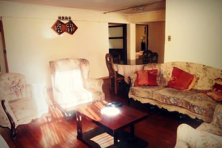 Beautiful apartment and extras - Nuestra Señora de La Paz - Daire