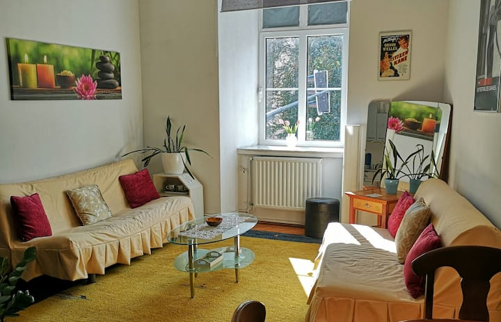 2 BIG ROOMS APT★SLEEPS 5★STRICT CENTER★LARGE 60m²