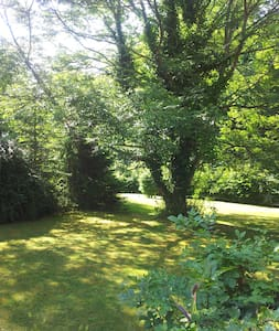 Single room in a forest! - West Sussex