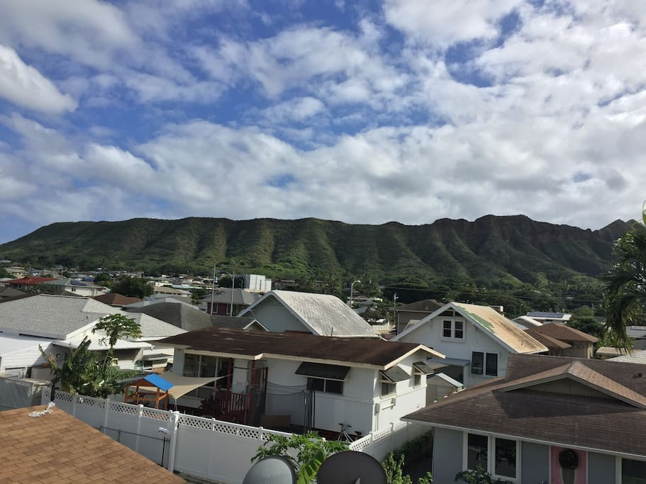 This is our Diamond Head view from the treehouse.