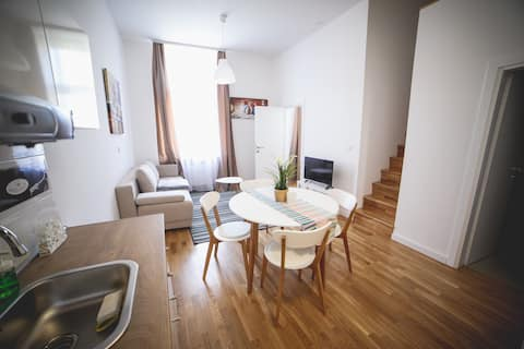 LUXURY ZAGREB DOWNTOWN AP. 1 BEDROOM + GALLERY No4