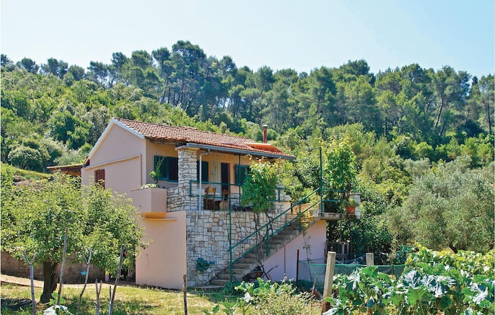 Nice home in Vela Luka with 1 Bedrooms