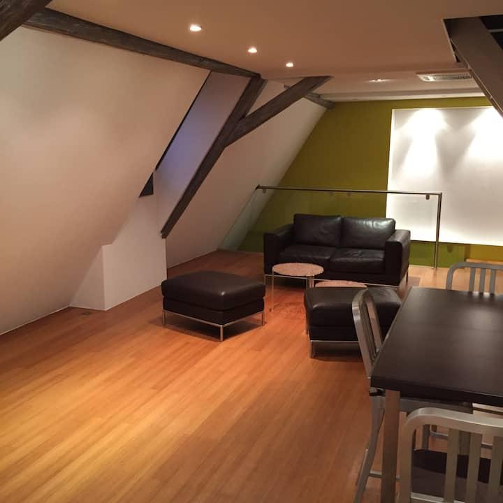 Duplex contemporain au coeur de Colmar