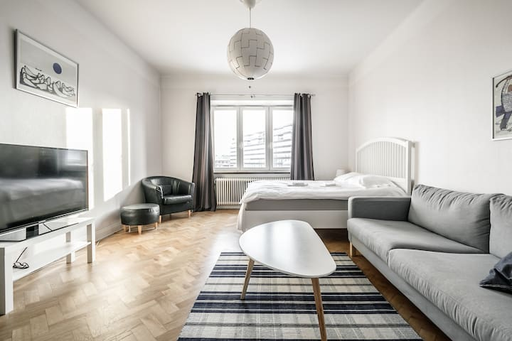 Scandinavian style in hip location SoFo