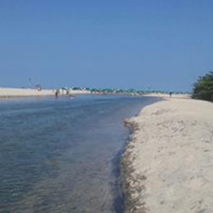 Disfrutando de la union del Rio y el mar, todo un sueño.