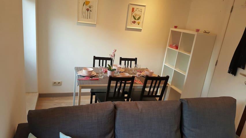 Bruxelles romantique appartement - Saint-Gilles - Casa